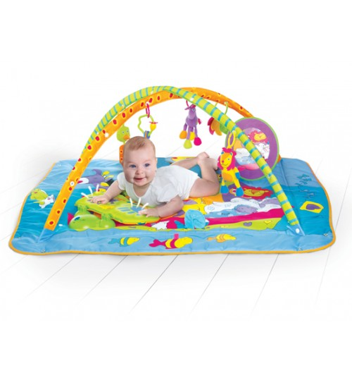 Gymini Kick and Play- Total Playground